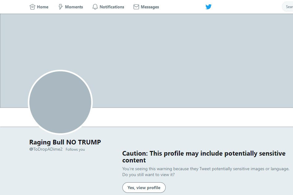 Screenshot: Twitter Sensitive Content Warning
